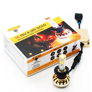 Ampoule Feu à LED Gold H11 Tecno Globe