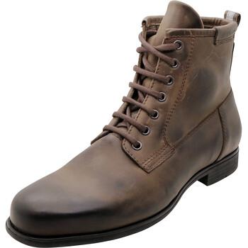 Chaussures Hodge Segura
